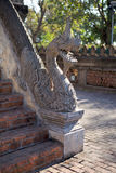 Dragão de pedra nas escadas no templo de Pha Kaeo do Haw em Vientiane, Laos Fotos de Stock