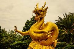 Dragão do ouro Fotografia de Stock Royalty Free