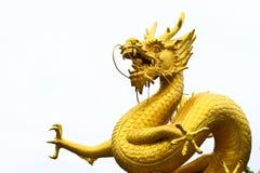 Dragão dourado Fotografia de Stock