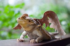 Dragão farpado nas asas de Brown fotos de stock royalty free