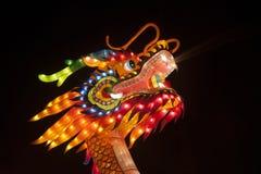 Cabeça do dragão Imagem de Stock Royalty Free