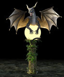 Dragão Stella Imagem de Stock Royalty Free