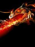 Dragón ardiente Imagen de archivo libre de regalías