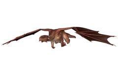 Dragón de la fantasía Imagen de archivo libre de regalías
