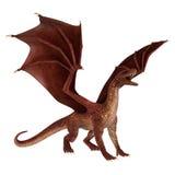 Dragón de la fantasía Fotografía de archivo libre de regalías