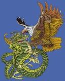 Dragón de la lucha del halcón   Fotografía de archivo libre de regalías