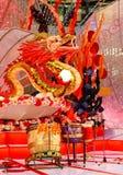 Dragón de los lomos Imagen de archivo