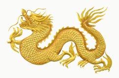 Dragón de oro en el fondo blanco Imagen de archivo
