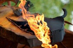 Dragón de respiración de la llama fotos de archivo libres de regalías