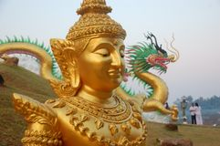 Dragón del frente del soporte del ángulo del oro Foto de archivo