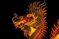 Dragón exótico del oro en fondo negro del cielo Foto de archivo libre de regalías