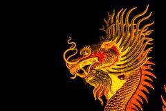 Dragón exótico del oro en fondo negro del cielo Imágenes de archivo libres de regalías