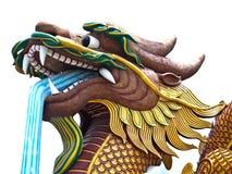 Dragón que se agacha con aislado en blanco Foto de archivo