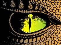 Dragón terrible del ojo que le mira Fotografía de archivo libre de regalías