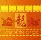 Dragón y fondo de la textura Imagen de archivo libre de regalías