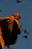 Dragón y palomas imagenes de archivo