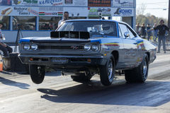 Drag car wheelie Royalty Free Stock Image