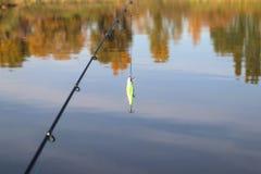 Drag på en metspö Fiska för rov- fisk perch pike Höst härlig sjö arkivbild