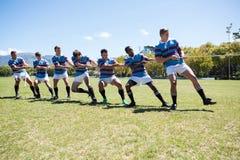 Dragande rep för rugbyspelare, medan stå på gräs- fält Fotografering för Bildbyråer