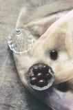 Dragee шоколада в стеклянном шаре Стоковая Фотография RF