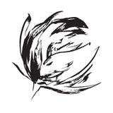 Dragen blomma för svart hand Royaltyfri Fotografi