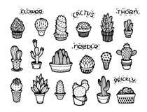 Dragen fastställd hand för kaktusvektor royaltyfri illustrationer