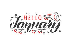 Dragen Hello januari hand märka kortet med den klottersnowlakes och fågeln Inspirerande vintercitationstecken vektor illustrationer