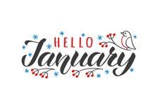 Dragen Hello januari hand märka kortet med den klottersnowlakes och fågeln Inspirerande vintercitationstecken royaltyfri illustrationer