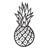 Dragen illustration för ananasvektor hand Royaltyfria Foton