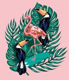 Dragen illustration för vektor hand av flamingo på surfingbrädan, tukan, palmblad stock illustrationer