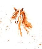 Dragen illustration för vattenfärg hand av den gulliga hästen Arkivbild