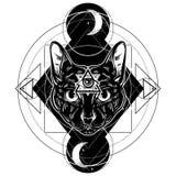 Dragen ilustration för vektor hand av katten vektor illustrationer