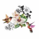 Dragen modell för vattenfärg hand med tropiska sommarblommor av och exotiska fåglar Arkivbild