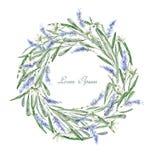 Dragen ram för vattenfärg hand kran Kort Blommor, örter och le Arkivbild
