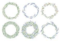 Dragen ram för vattenfärg hand kran Kort Blommor, örter och le Royaltyfria Bilder