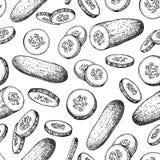 Dragen sömlös modell för gurka hand isolerad grönsak stock illustrationer