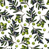 Dragen sömlös modell för vektor hand av olivgröna filialer Naturliga kosmetiska produkter Oljor för håromsorg Lantgårdgrönsaker stock illustrationer