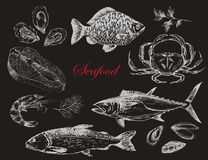Dragen skaldjuruppsättning för vektor hand - räka, krabba, hummer, lax, ostron, mussla, tonfisk, forell, karp Medelhavs- kokkonst royaltyfri illustrationer