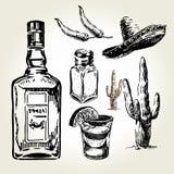 Dragen Tequilauppsättninghand vektor illustrationer