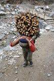 Dragend brandhout Stock Foto's