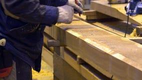 Dragend handschoenen en het werkkleding om zaag in werking te stellen snijd noteringen in potlood op een logboek stock footage