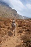 Dragerezel en een mens in een weg kreta Griekenland Stock Fotografie