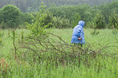 Draging κλάδοι γυναικών Στοκ φωτογραφία με δικαίωμα ελεύθερης χρήσης