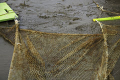Dragnet για να πιάσει λίγο ψάρι Στοκ Εικόνες