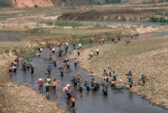 Dragnet fishing, ethnic Thai in Vietnam. Ethnic Thai villagers in northern Vietnam use traditional method to collectively use their nets as they make their way Stock Photo