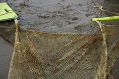 Dragnet som fångar den lilla fisken Arkivfoto