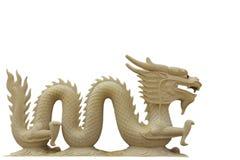 Drago Immagini Stock
