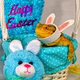 Drago barbuto e coniglio che celebrano Pasqua Immagini Stock Libere da Diritti