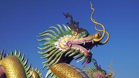 Drago cinese con cielo blu stock footage