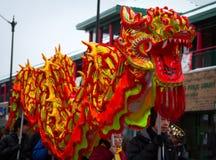 Drago cinese di parata di nuovo anno Fotografia Stock Libera da Diritti